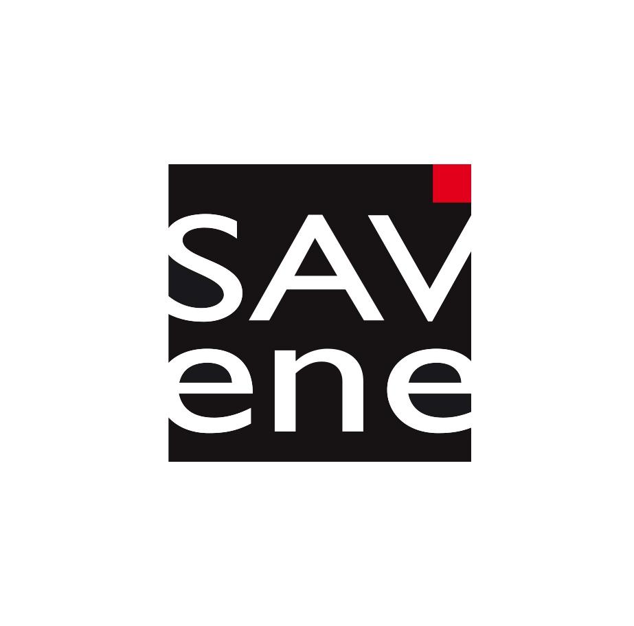 savene logo 923x911 - SAVene